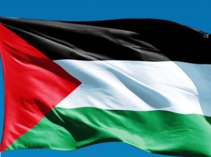 ONU palestina